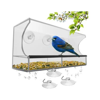 Nature's Hangout Window Bird Feeder with Suction Cups