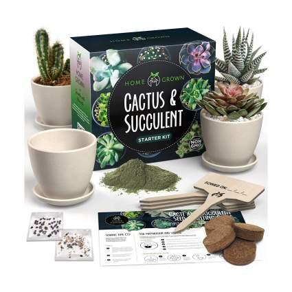 Succulent & Cactus Starter Seed Kit