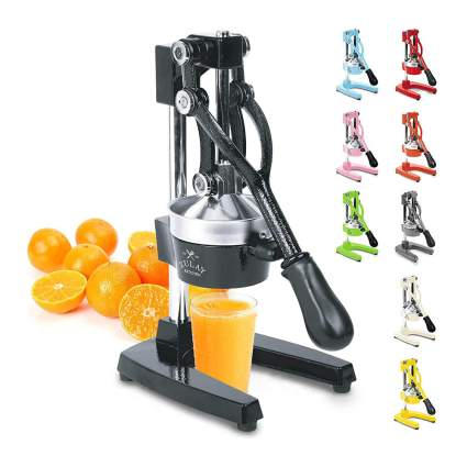 Zulay Fruit Juicer