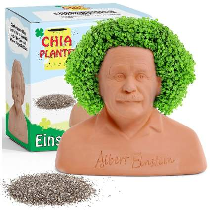 Albert Einstein Chia Planter