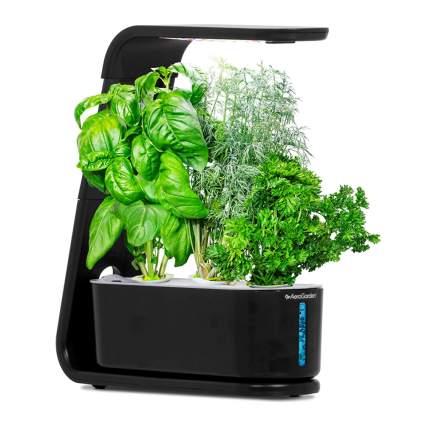 small hydroponic garden