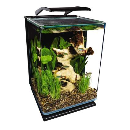 five gallon aquarium kit