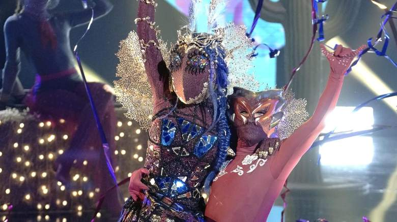The Masked Dancer Moth