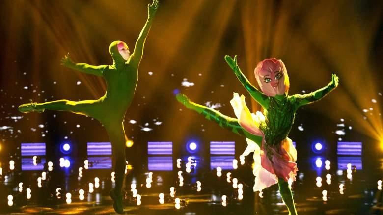 The Masked Dancer Tulip