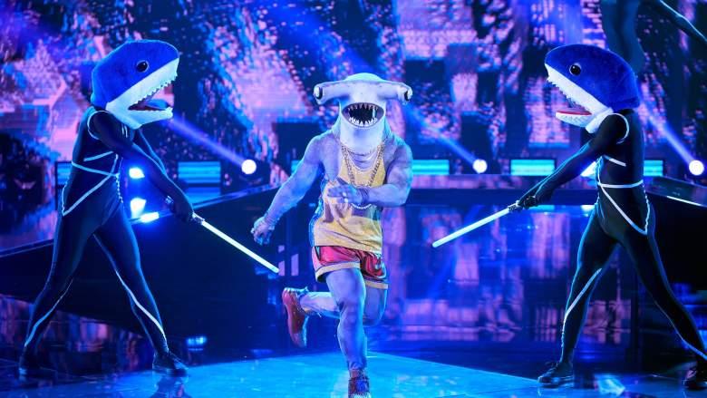 Hammerhead Shark The Masked Dancer
