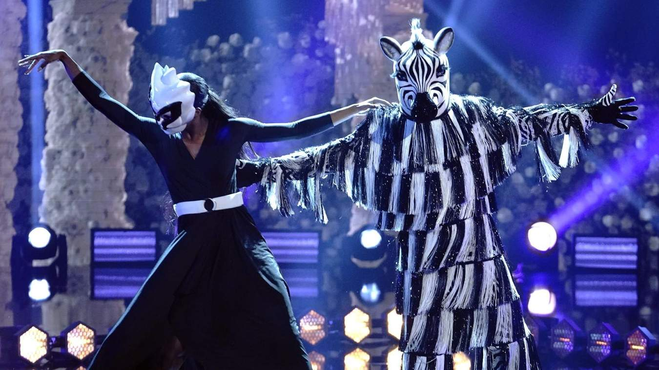 The Masked Dancer Zebra