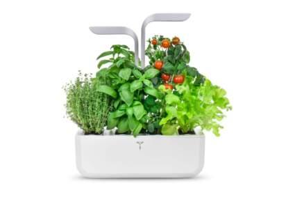 smart indoor hydroponic garden