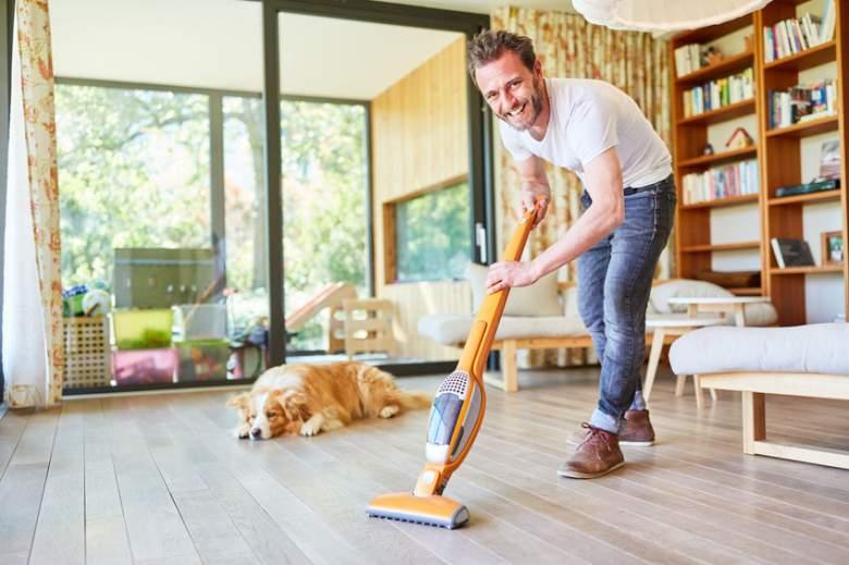 best stick vacuum for pet hair