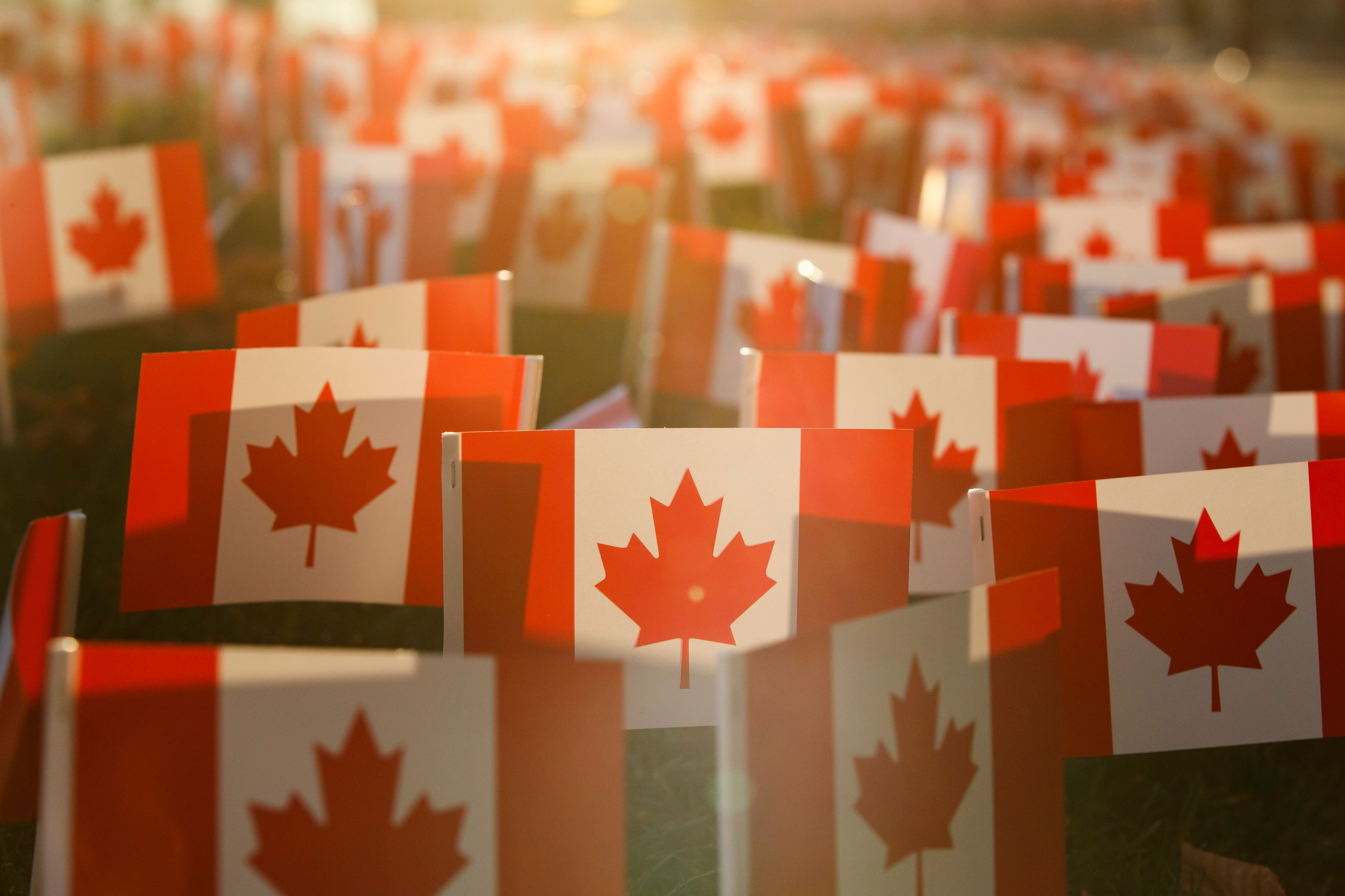 Miniature Canadian Flags on display