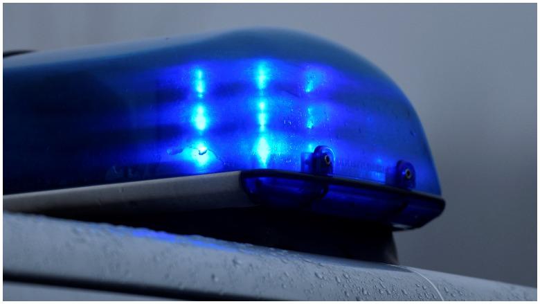 12 year old boy kills home intruder