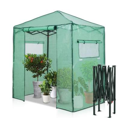 Small walk in greenhouse