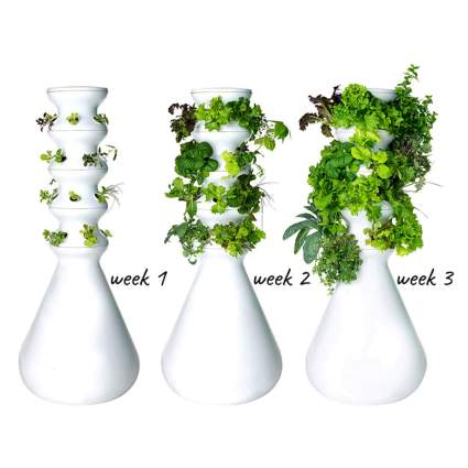24 plant hydroponic garden