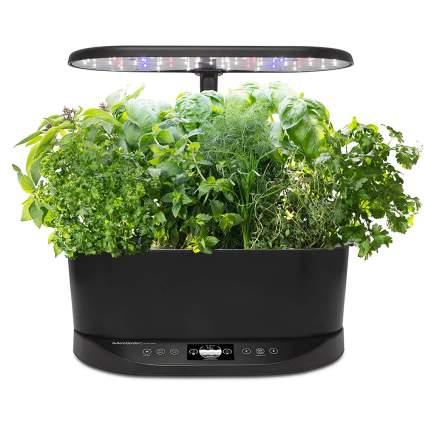 aerogarden indoor hydroponic garden