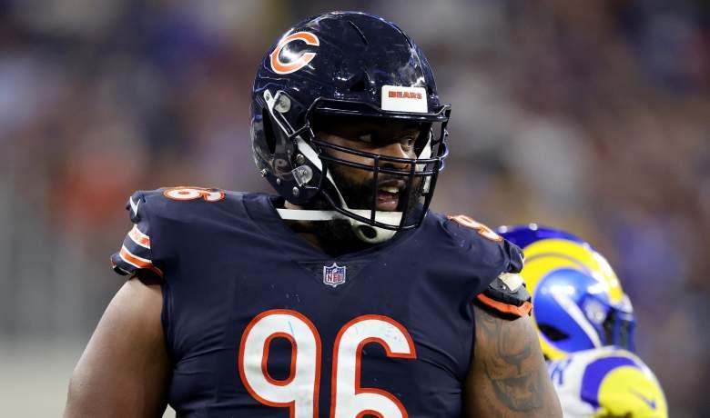 Akiem Hicks Bears future