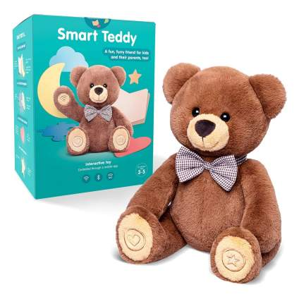 Smart Teddy