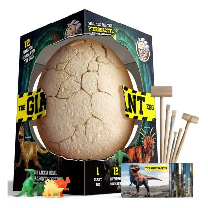 XXTOYS Dino Egg Dig Kit