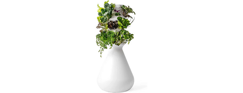 lettuce grow 18 plant hydroponic