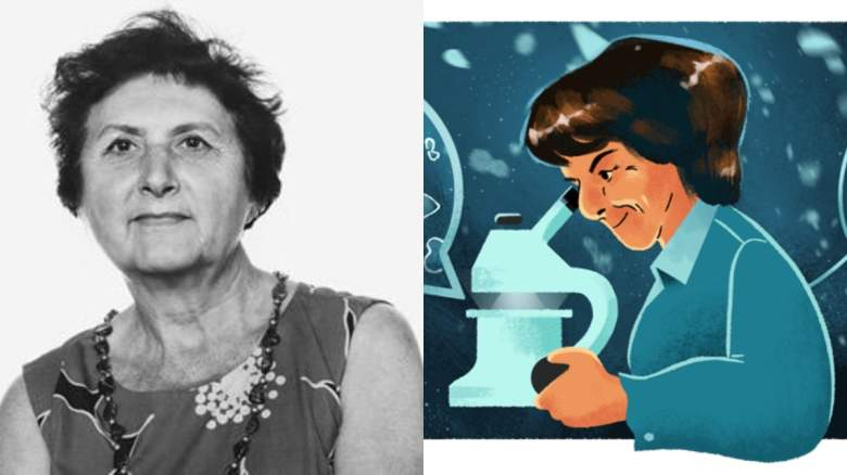 María de los Ángeles Alvariño González
