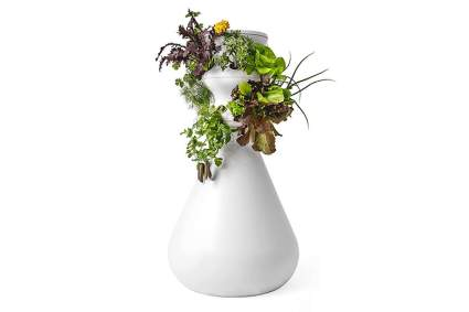 lettuce grow hydroponic growing system